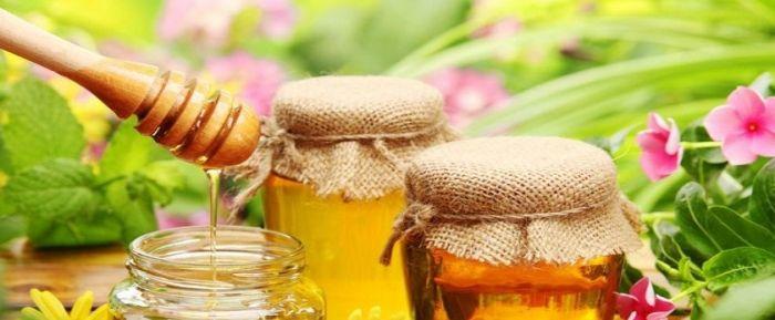 Использование меда при геморрое в домашних условиях